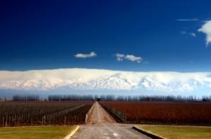 argentina-landscape